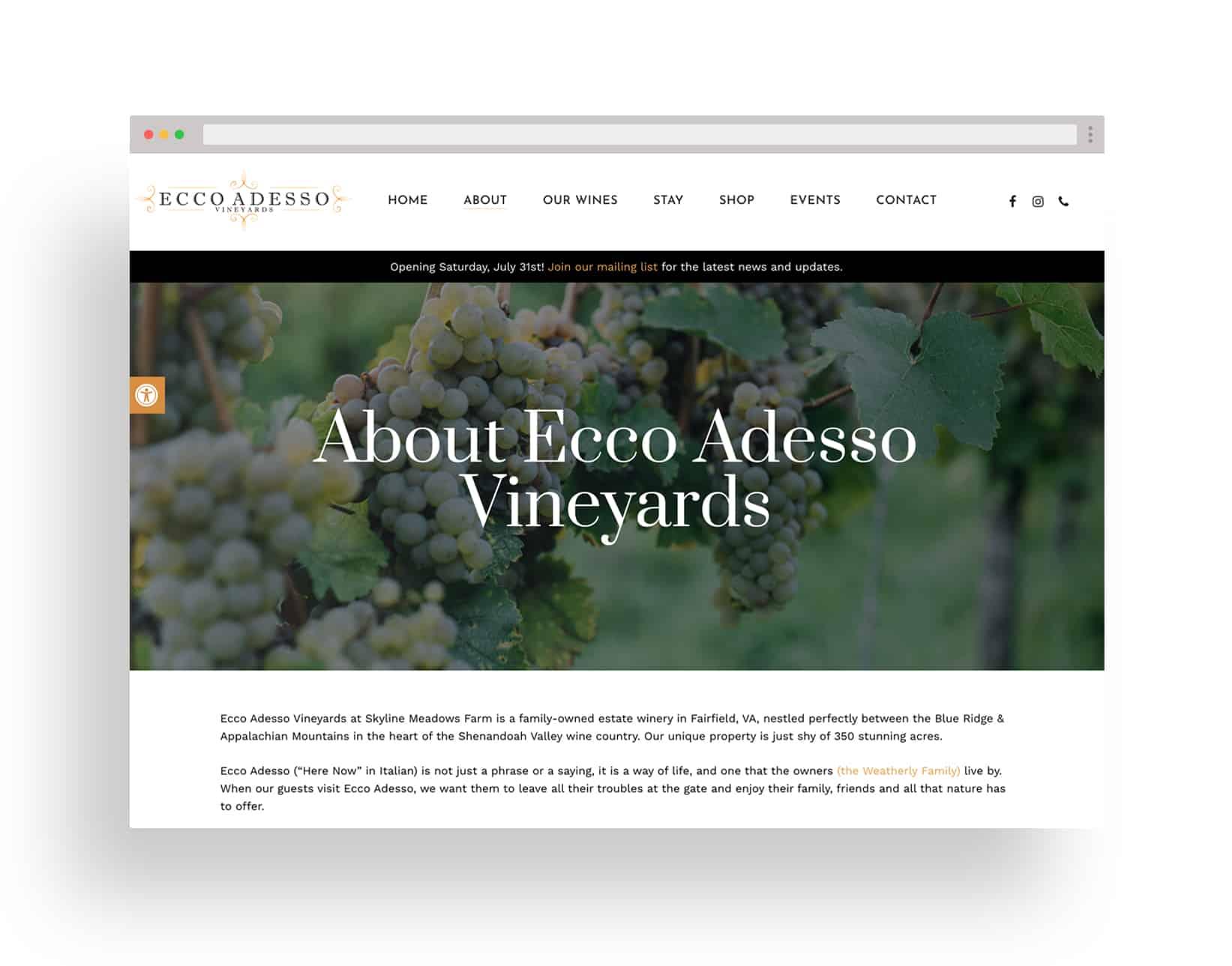 Studio JWAL Web Design Client - Ecco Adesso Vineyards